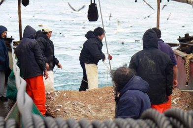 Pesca-Langostino-Revista-Puerto