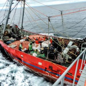 AR-Pesca-Buque-Langostinos