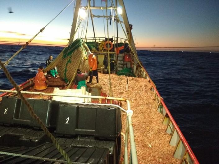 pesca-langosino-mar_del_chubut_fernando_greco