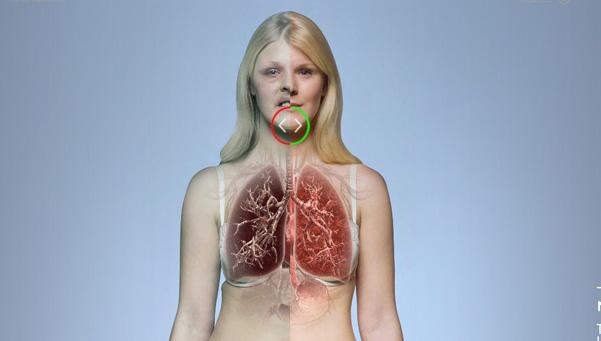 cigarrillos-pulmones