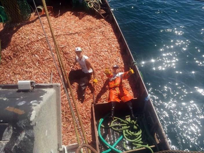 pesca-langostino_cubierta1-960x700